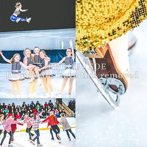 2016 Annual Show