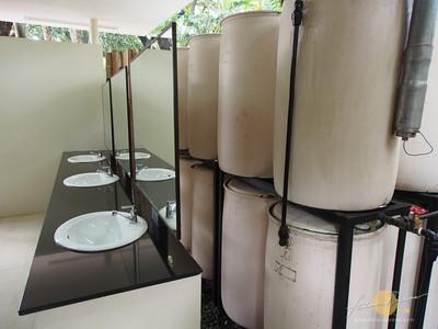 Green Restroom