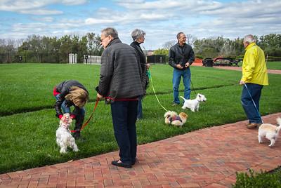Rocketts Dogs-021