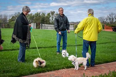 Rocketts Dogs-022