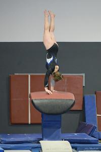 Gymnastics Sectionals meet, 2021 March 20, Northfield Gymnastics Club, Northfield, Minnesota  USA.