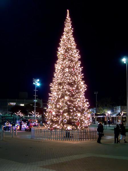 Jack London Square Christmas tree