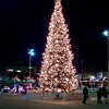 Jack London Square Christmas tree