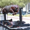 Oliveto's roasting pig