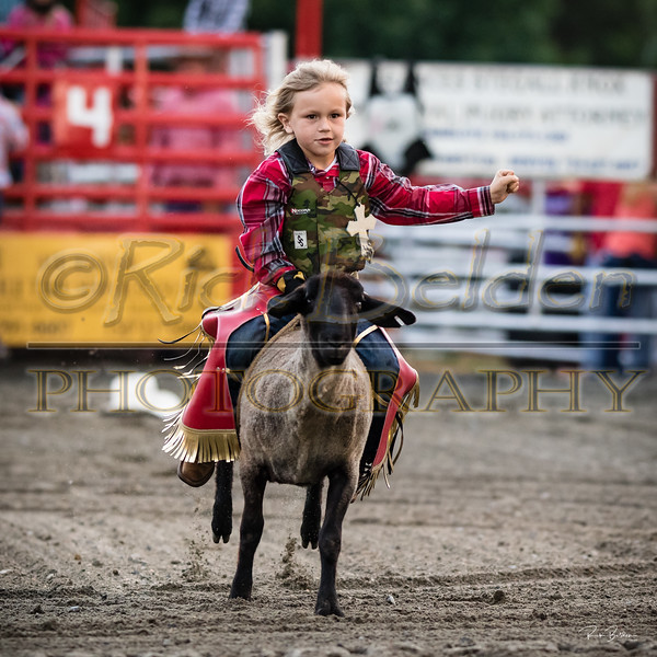Had a great time tonight at Stegall's Arena in Concord, NC.  Always amazing to see these brave riders of all ages compete!