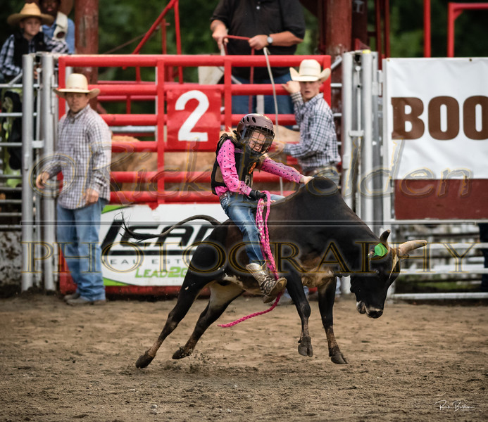 Captured this little slice of time time last night at Stegalls Arena.  This little cowgirl was so impressive to watch.  She ended up have a hard fall...jumped up and dusted Herself right  off.  A lot can be learned at the Rodeo.    ...............................................................................................................