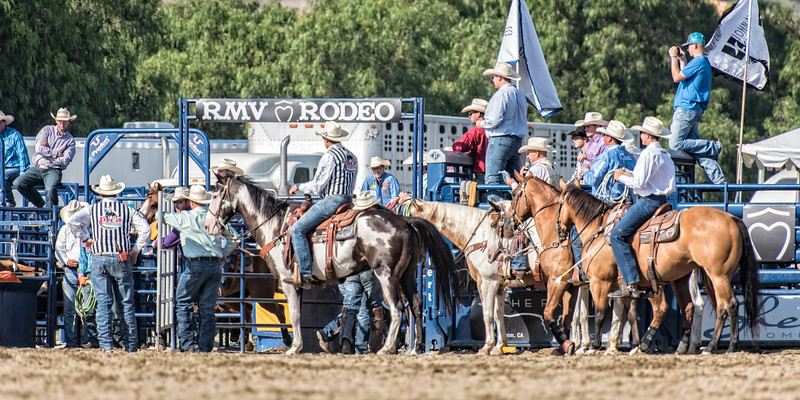 RMV Rodeo_DSC4017 copy