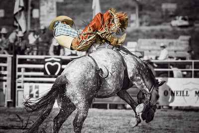 Bucking Bronco 1 BW