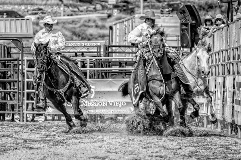 Rodeo 1 horse BW