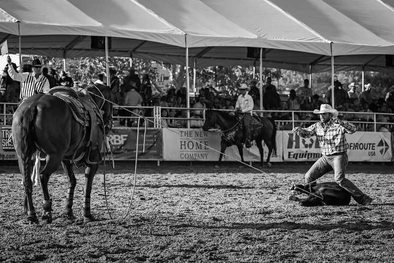 roping 3a BW