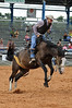 "Arcadia All-Florida Rodeo : The Arcadia ""Best of the Ranches"" Rodeo was held on September 5th and 6th.  These are a few images from the event.  These are working ranch hands that compete.  Event web site:  http://www.arcadiarodeo.com/