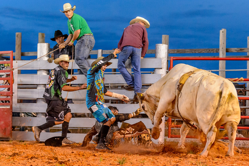 Rodeo Clowns (or Bull Fighters) to the rescure - literally