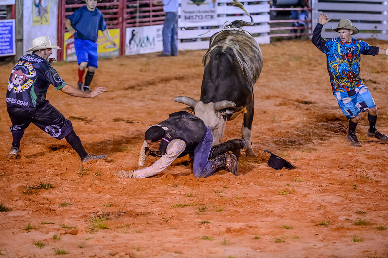 The bull fighters move in to distract the bull