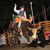 Ridem_Cowboy
