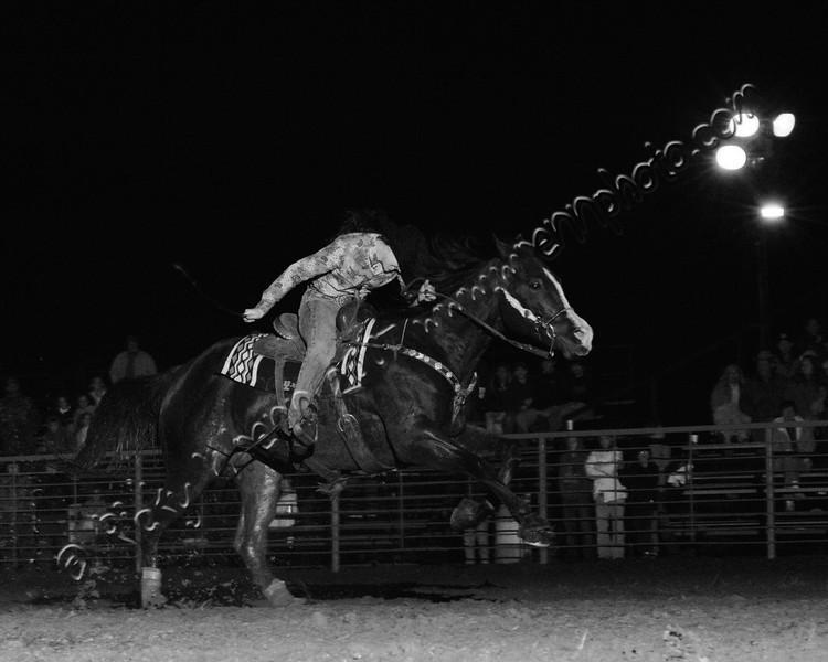 Barrel_Rider_2a