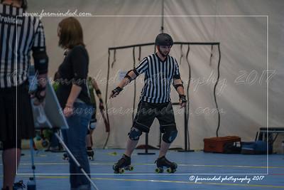 D75_0567-12x18-01_2017-Roller_Derby-W