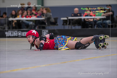 DS5_0954-12x18-04_2018-Roller_Derby-Harry_Potter-W
