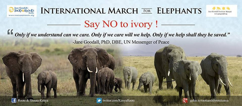 Roots & Shoots Kenya - International March for Elephants