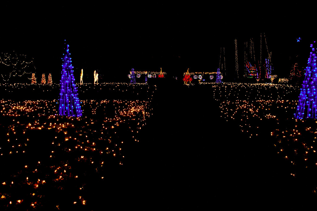 That's not to say that the project was small. This display is just entirely based on visible light. It encompasses the entire grounds of the Rotary Botanical Gardens in Janesville, WI. The black path is where the people go, like dust lanes in the galazy. See it if you can. It's am-frickin-mazing. Four hundred fifty thousand light bulbs, my friends. Admission's only a five spot, and it does a good deed for a local organization that helps us balance our carbon footprint year after year.