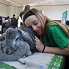 Celebration of Roudenbush Community Center reopening after renovations. 4-H member Vienna Wilhelm, 10, of Westford, rests her head on Luna, a French lop rabbit belonging to Isabella DeScenza of Wesford. French lops have a large dewlap, the double chin that female rabbits pluck fur from to build nests. (SUN Julia Malakie)