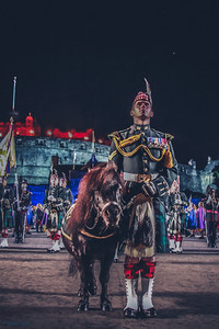 The Royal Regiment mascot, Shetland pony Cruachan III  (aged 23) has now retired after 19 years of m