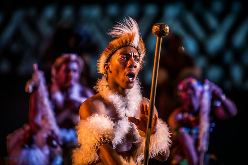 iNgobamakhosi Zulus Dance Troupe