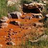 Mineralquelle bei Wentworth Springs