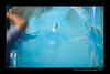 DSC_6506-12x18-06_2014- CR-Blue-W