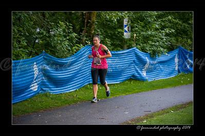 DSC_8581-12x18-07_2014-Her_Tern-W