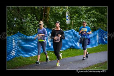 DSC_8568-12x18-07_2014-Her_Tern-W