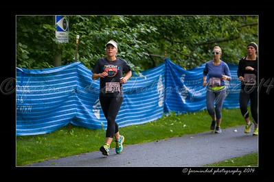 DSC_8562-12x18-07_2014-Her_Tern-W