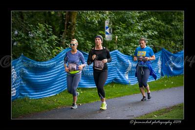 DSC_8567-12x18-07_2014-Her_Tern-W
