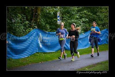 DSC_8564-12x18-07_2014-Her_Tern-W