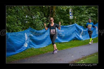 DSC_8543-12x18-07_2014-Her_Tern-W