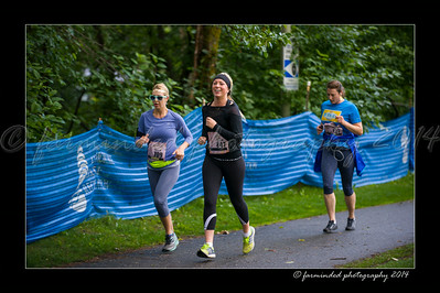 DSC_8569-12x18-07_2014-Her_Tern-W