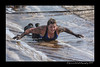 DS7_9133-12x18-06_2014-Mud_Run-W