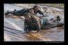 DS7_9112-12x18-06_2014-Mud_Run-W