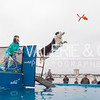 SEWE Dock Dogs-Saturday-1016-48-3