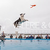 SEWE Dock Dogs-Saturday-1016-48-4