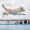 SEWE Dock Dogs-Friday-1150-54-2