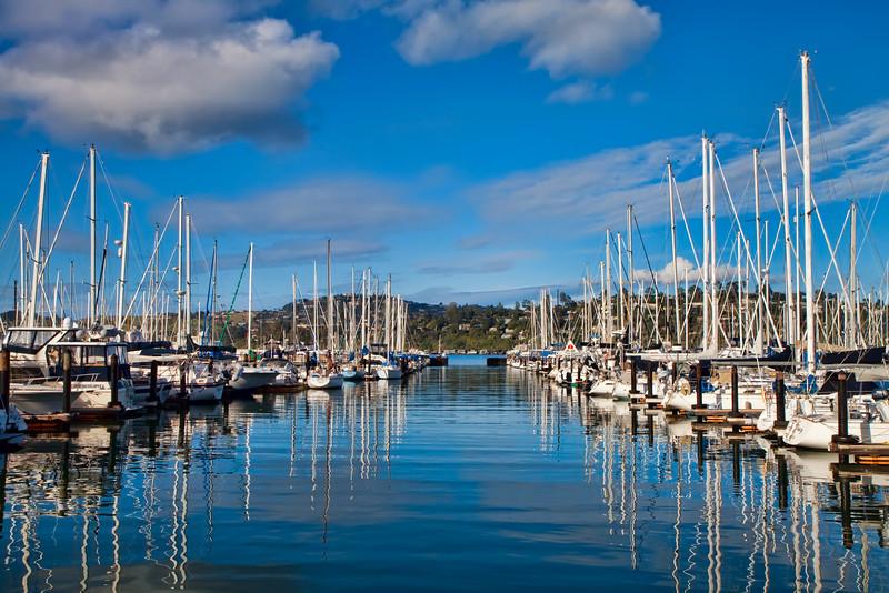 Sausalito Yacht Harbor 7