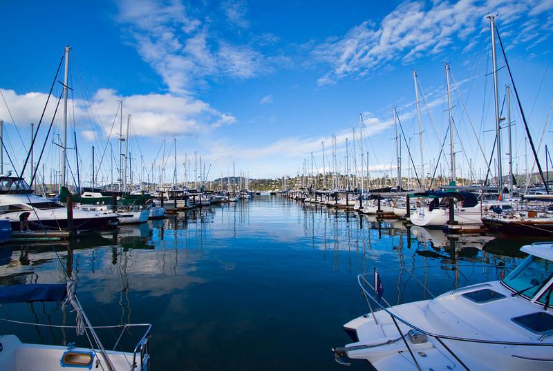 Sausalito Yacht Harbor 1