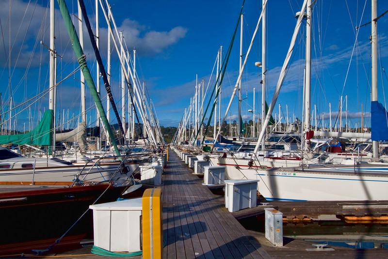 Sausalito Yacht Harbor 4