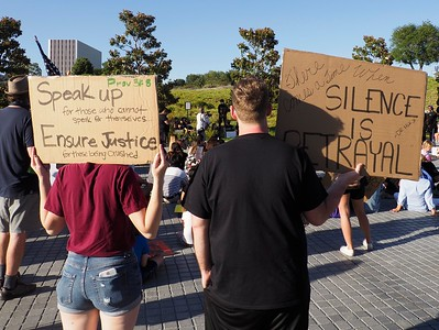 Signs were home made  reflected the same themes as shown at previous rallies in Newport Beach.