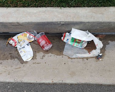 Another fine still life. Note the juxtaposition of nature (grass), concrete, trash in the gutter, and pavement.