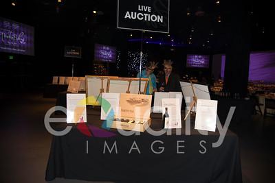 20140510_FHP-Auction_014_9324