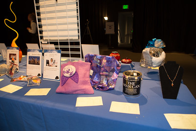 20160507_FHP-Auction_01_029_7962
