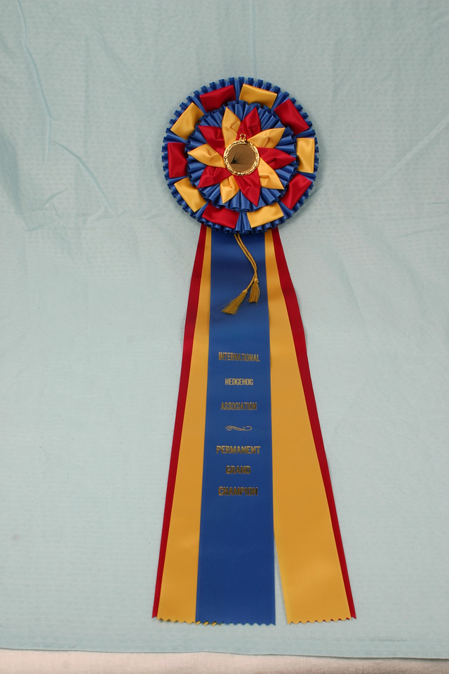 Southern Missouri Hedgehog Show 2004  Permanent Grand Champion ribbon  Filename reference: 20040612-220402-HAH-SMHC_2004-SM