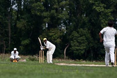 Cricket-5192