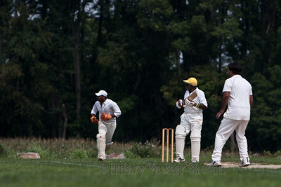 Cricket-5195